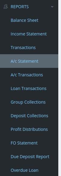 report-module-micro-credit-software